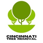 Cincinnati Tree Removal - Cincinnati, OH, USA