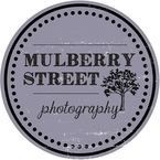 Mulberry Street Photography - Noblesville, IN, USA