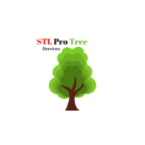 STL Pro Tree Services - Saint Louis, MO, USA