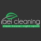 AEI Cleaning Inc. - Chicago, IL, USA
