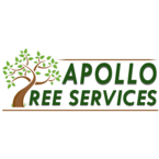 Apollo Tree Service - Montrose, Angus, United Kingdom