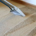 Carpet Cleaners of Salem - Salem, OR, USA