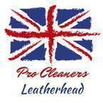 Pro Cleaners Leatherhead