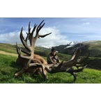 Leithen Valley Hunts - Gore, Southland, New Zealand