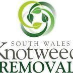 South Wales Knotweed Removal - Ammanford, Carmarthenshire, United Kingdom