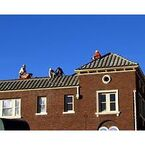 Target Roofing and Repair - Columbus, OH, USA