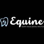 North Wales Equine Dental Practice - Ffrith, Wrexham, United Kingdom