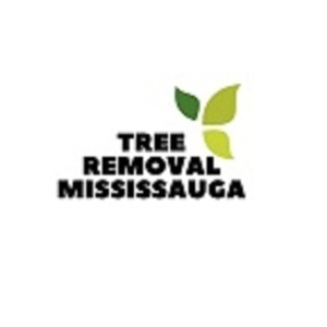 Tree Removal Mississauga - Mississauga, ON, Canada