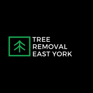 Tree Removal East York - East York, ON, Canada