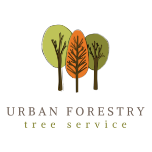 Urban Forestry Tree Service - Denver, CO, USA