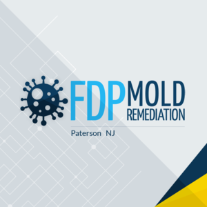 FDP Mold Remediation | Mold Remediation Paterson - Paterson, NJ, USA