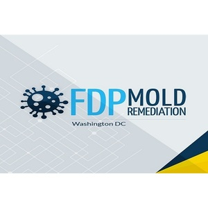 FDP Mold Remediation - Washignton, DC, USA