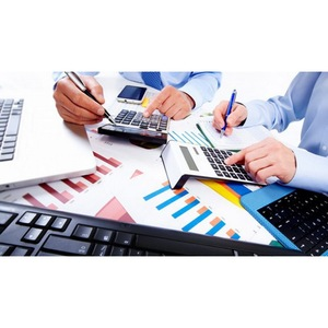 BEE Matrix - Professional Bookkeeping & Accounting - Leesburg, VA, USA