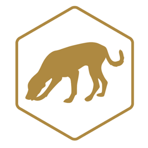 AFB dog detection services - Auckland, Auckland, New Zealand