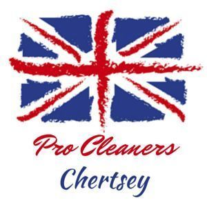 Pro Cleaners Chertsey