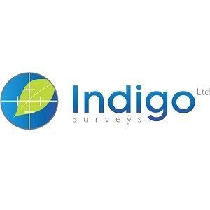 Indigo Surveys - Chester, Cheshire, United Kingdom