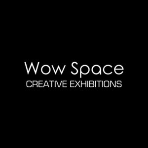 Wow Space Creative Exhibition - Shrewsbury Shropshire, Shropshire, United Kingdom