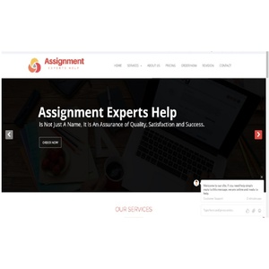 Assignment Experts Help - Gloucester, Gloucestershire, United Kingdom