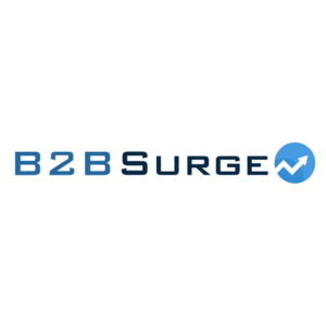 B2B Surge Web Design & Marketing - Flint, Flintshire, United Kingdom