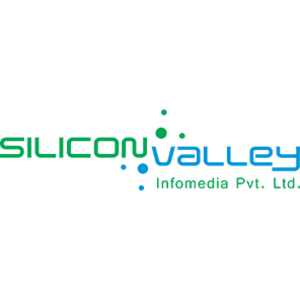 Silicon Engineering Consultants LLC - Maple Grove, MN, USA